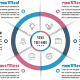 Business Circle Infographics with 06 Steps