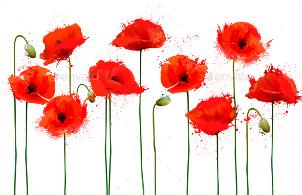 Abstract Background With Red Poppies Flowers - Flowers & Plants Nature