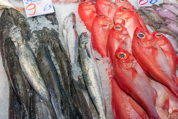 Red bream and other fish for sale  - Stock Photo - Images