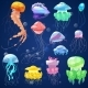 Jellyfish Vector Ocean Jelly-fish and Underwater