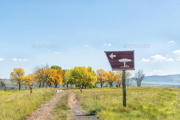 Roadside picnic spot at top of Kraai River Pass - Stock Photo - Images