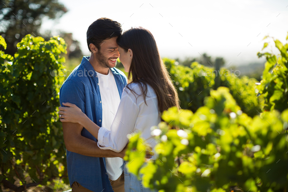 Happy young couple standing face to face at vineyard - Stock Photo - Images