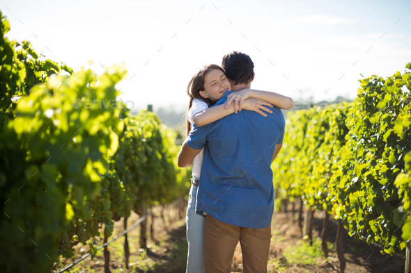 Couple hugging amidst plants at vineyard - Stock Photo - Images