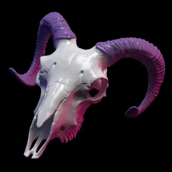 Goat skull 3D print model - 3DOcean Item for Sale