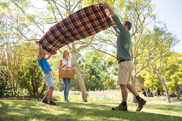 Father and son spreading the picnic blanket while mother carrying basket - Stock Photo - Images