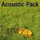 Acoustic Pack - AudioJungle Item for Sale