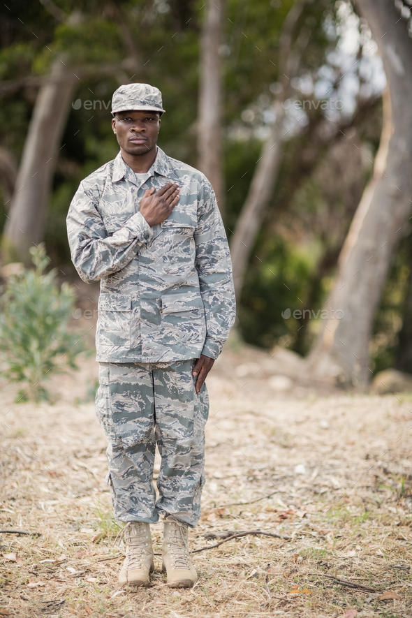 Mid section of soldier taking pledge - Stock Photo - Images