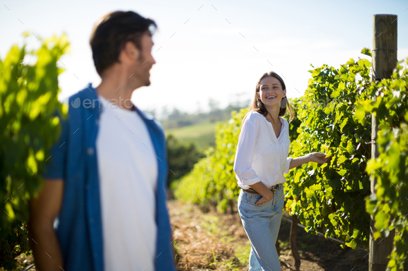 Happy couple looking at each other standing in vineyard - Stock Photo - Images