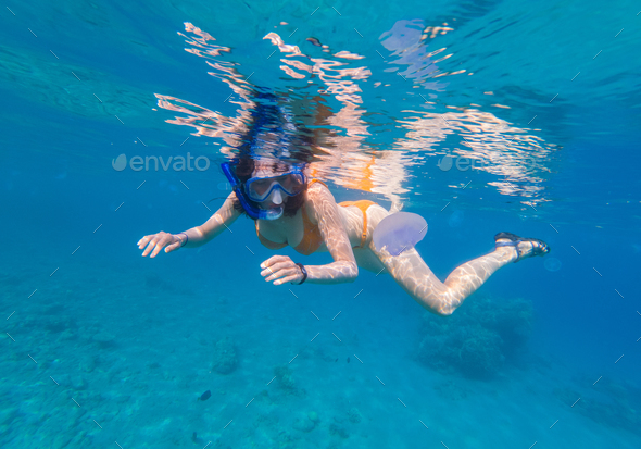 Woman snorkeling above coral reef - Stock Photo - Images