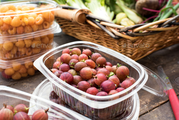 Container of fresh gooseberries - Stock Photo - Images