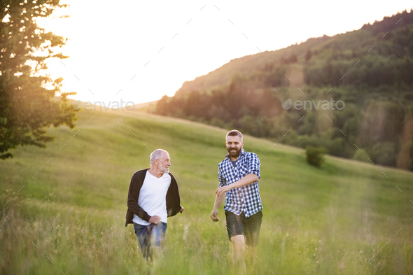 An adult hipster son with senior father walking in nature at sunset. - Stock Photo - Images