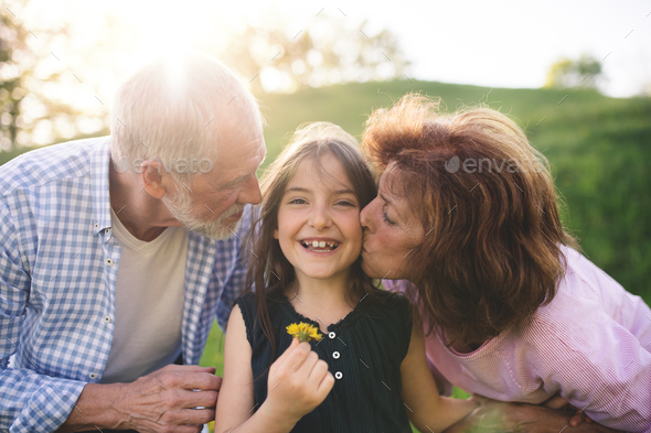 Senior couple with granddaughter outside in spring nature, relaxing on the grass. - Stock Photo - Images
