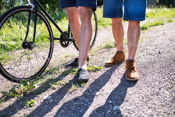 An adult son with bicycle and senior father walking on a road in sunny nature. - Stock Photo - Images