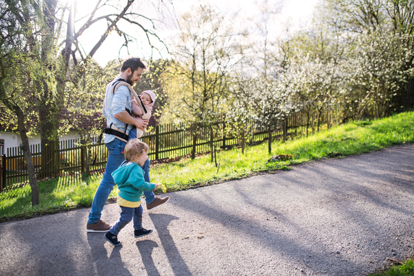 A father with his toddler children outside on a spring walk. - Stock Photo - Images