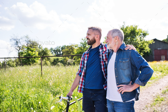 An adult hipster son with bicycle and senior father on a walk in sunny nature. - Stock Photo - Images
