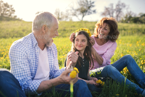 Senior couple with granddaughter outside in spring nature, making dandelion wreath. - Stock Photo - Images