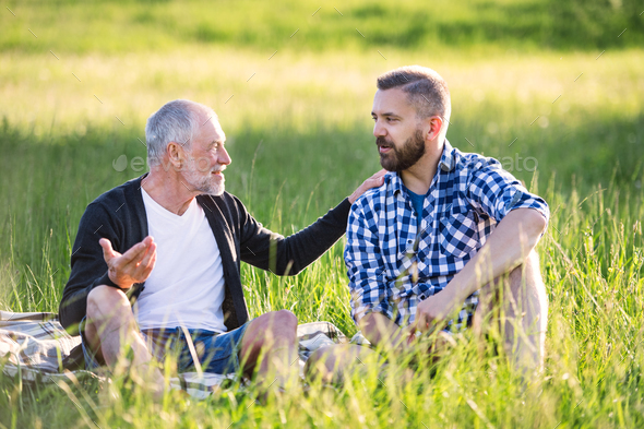An adult hipster son with senior father sitting on the grass in sunny nature. - Stock Photo - Images