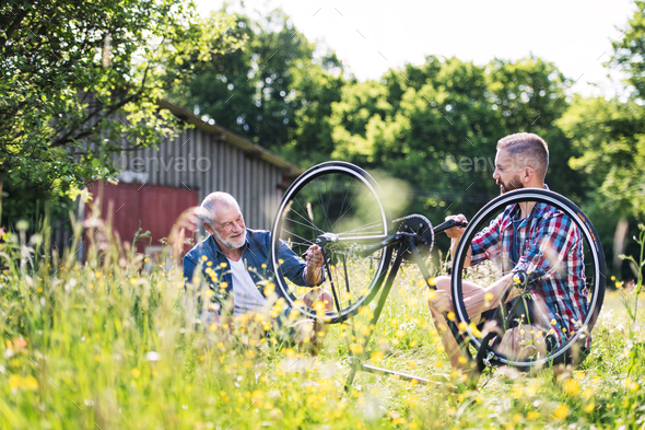An adult hipster son and senior father repairing bicycle outside on a sunny day. - Stock Photo - Images
