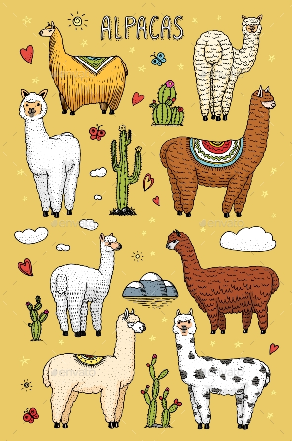 Set of Alpaca Llamas or Wild Guanaco - Animals Characters