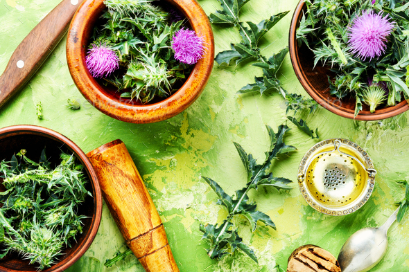 Natural herbal medicine - Stock Photo - Images