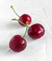 ripe cherries on white textured background - PhotoDune Item for Sale