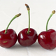 ripe cherries on white textured background - PhotoDune Item for Sale