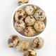 bowl of fresh quail eggs - PhotoDune Item for Sale
