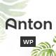 Anton - Multi Store Responsive WordPress Theme