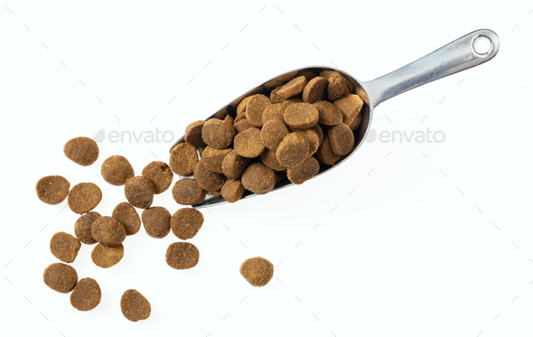 Scoop with pet food, top view, cut out and isolated on white background. - Stock Photo - Images