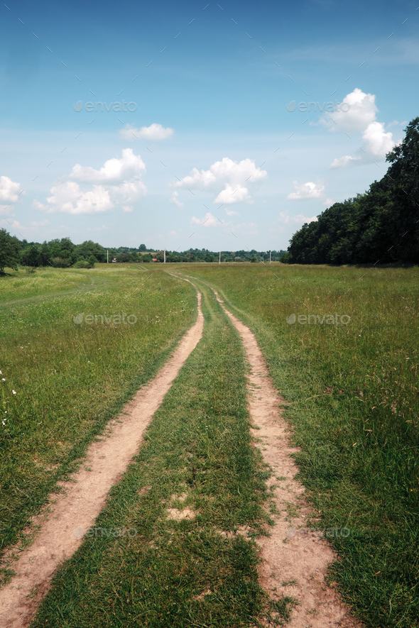 road, field and forest - Stock Photo - Images