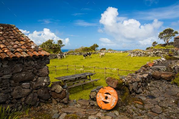 Azores typicalhouse - Stock Photo - Images