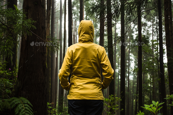 Enjoy the nature - Stock Photo - Images