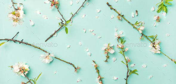 Spring floral background with white almond flowers over blue background - Stock Photo - Images