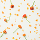 Flat-lay of orange buttercup flowers over white background, wide composition - PhotoDune Item for Sale
