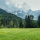 Beautiful pasture below the Julian Alps - PhotoDune Item for Sale
