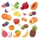 Fruits Vector Fruity Apple Banana and Exotic