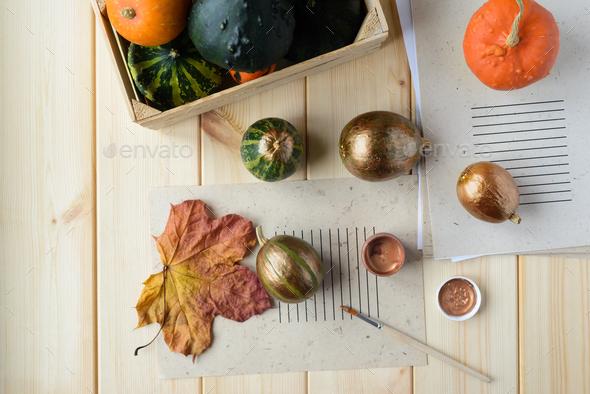 bronze color pumpkin - Stock Photo - Images
