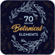 Botanical Elements - GraphicRiver Item for Sale