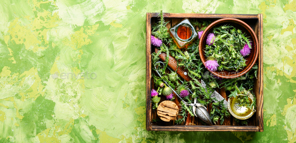 Natural herbs medicine - Stock Photo - Images
