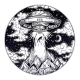 Alien Spaceship UFO Abduction - GraphicRiver Item for Sale