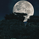 Big Moon - VideoHive Item for Sale