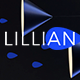 Lillyan – Responsive Email + StampReady Builder & Mailchimp
