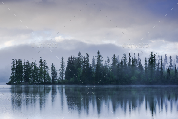 Fogg over lake side and forest with water reflection - Stock Photo - Images
