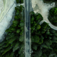 Car driving on alpine road in forest, top down aerial drone view - PhotoDune Item for Sale