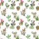 Seamless Pattern with Cactus and Succulents - GraphicRiver Item for Sale