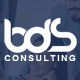 BDS - Consulting & Business HTML Template