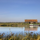 The Jantjeskeet in the Biesbosch - PhotoDune Item for Sale