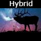 Hybrid Teaser