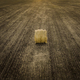 Round Bale of Hay - PhotoDune Item for Sale