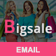 BigSale - Responsive Email Template - ThemeForest Item for Sale